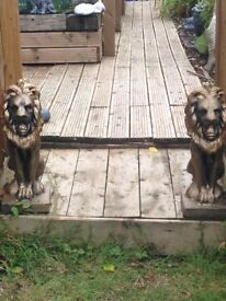 Two matching large stone sitting lions