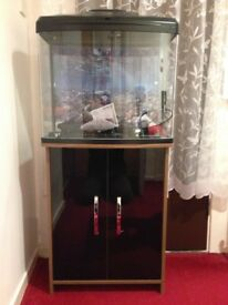 90L , aquarium fishtank
