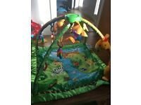 Fisher price Jungle Gym - great condition