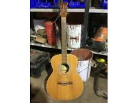 Brunswick folk acoustic guitar