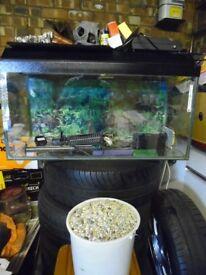 Aquarium with full set up.