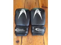 Boxing Gloves - EXCELLENT CONDITION