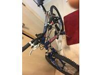 Havoc Universal Bike