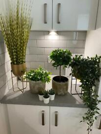 Artificial plants with pots - sold together or separately