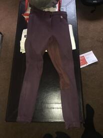 Purple jodhpurs