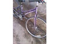 bicycle claud butler ladies