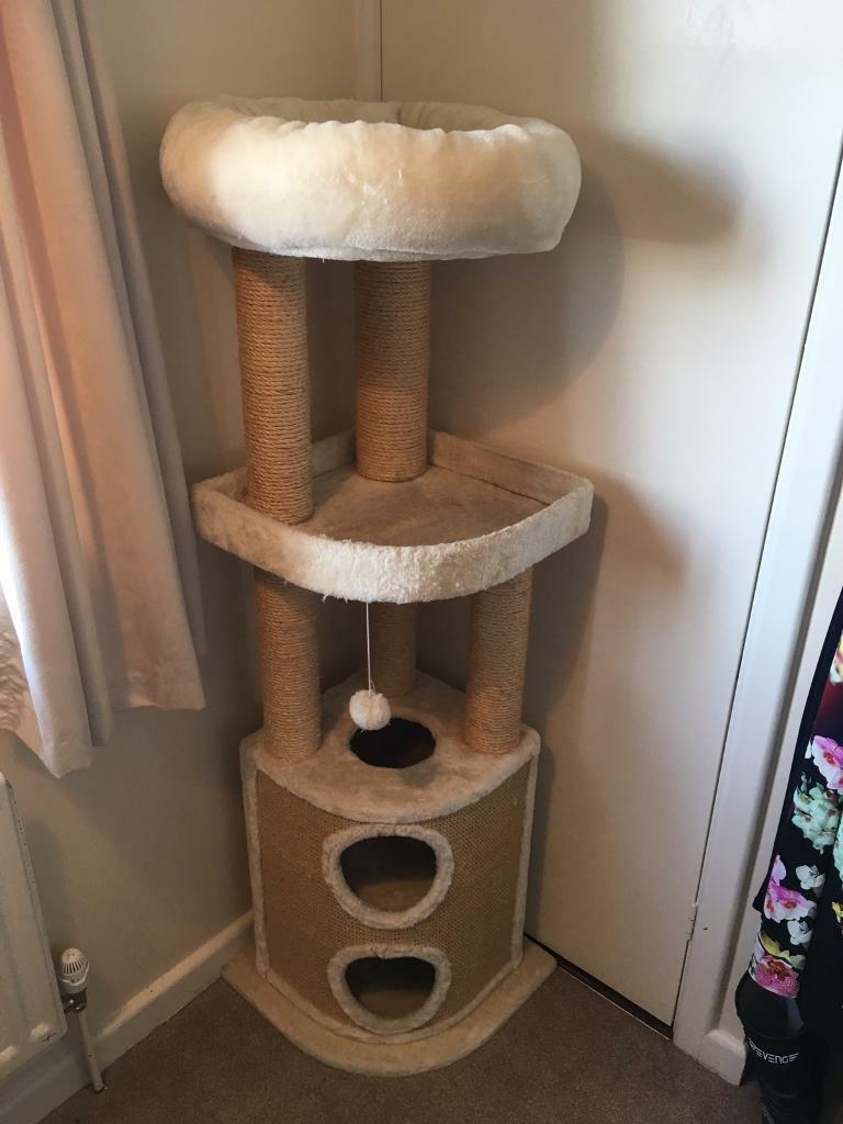 Cat Scratch Tower In Cosham Hampshire Gumtree