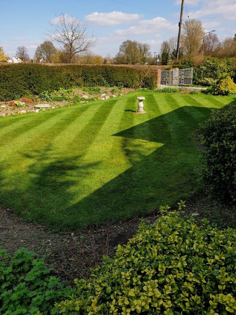 Lawn Mowing In Chesterfield Derbyshire Gumtree