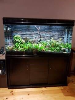 Brand New Aquarium 4ft Fish tank, hood, cabinet, filter system Blacktown Blacktown Area Preview