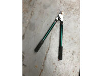 Extendable Loping Sheers