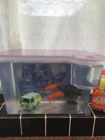 2 Goldfish with a tank