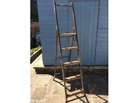 Quality, Wooden stepped ladders with metal frame