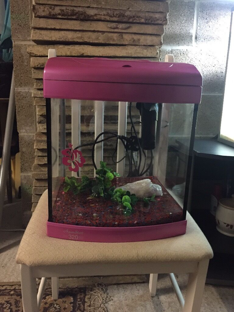 Pink fish tank aquarium with filter - 28l Aqua Start Pink Fish Tank Very Nice Full Set Up With Light Filter Gravel Ornament