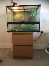 Reptile vivarium and equipment