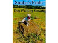 Simba's Pride - Dog Walking Service