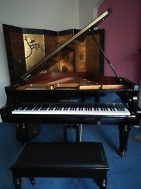 Bernhard Steiner Immaculate Baby Grand Piano. Korean made, Superb tone and a beautiful piece.