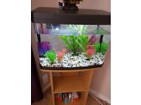 Fish tank including stand and ornaments 80 litre capacity