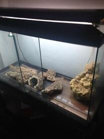 Glass vivarium