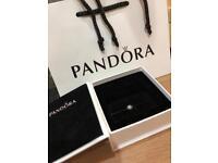 Pandora Essence charm