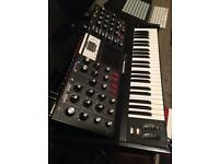 Mini Moog Voyager Select Series EB model