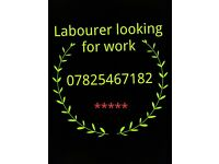 🔨🔨Labourer looking for work, can start ASAP 🔨🔨
