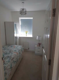 Beautiful single room to rent in a new build house