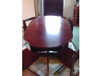 BUTTERFLY FOLDING TABLE & 4 CHAIRS