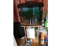 45L fish tank and the stand full set up