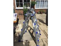 Extendable multi use telescopic ladder