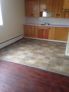 Viking Apartments - Apartment for Rent Regina Regina Regina Area image 4