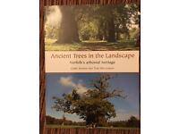 Ancient trees in the landscape before book.