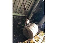 FREE Very old cement roller/ground leveller