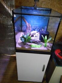 All Glass Aquarium 65 litres with Cabinet and extras