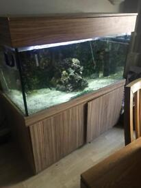 Maiden head aquatic fish tank 4x2x2 complete with external filter heater