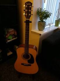 Farida d80 acoustic guitar