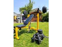 ENTIRE WEIGHT BENCH SET UP