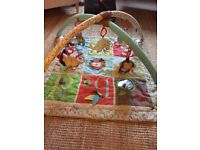 Baby Play Gym/Mat