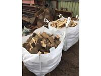MASSIVE mixed bag of hardwood and soft wood
