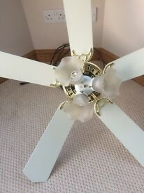 Ceiling fan and lights used in our conservatory in very good condition.