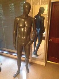 John Lewis Mannequin - Used