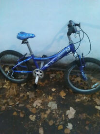 Quality Btwin childs bike bicycle 7 speed goo working order
