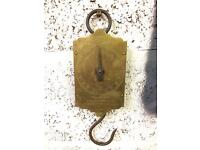 Salters brass spring scales