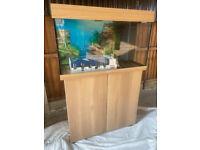 Juwel rio 125 beech new model tropical/marine fish tank aquarium(delivery installation)