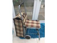 Folding seat shopping trolley