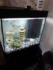 Juwel fish tank good condition