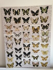 Large, Butterfly Canvas, Wall Art