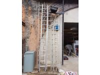 Youngman - Alluminium Single Section Ladders at 3m, (x2) at 3.2m and 3.8m
