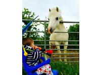 Flexible/reliable and trustworthy nanny/childminder
