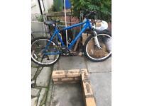 Bike Carrera valcan