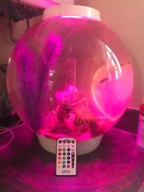 60l bio orb fish tank complete with everything and fish ready to go